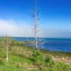 DHR17 - Lake Michigan