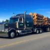 DHR17 - lumber truck